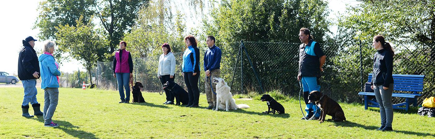 Zkoušky na Cvičičišti psů Veverská Bítýška ZZO